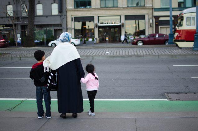 Etniske minoritetsfamilier